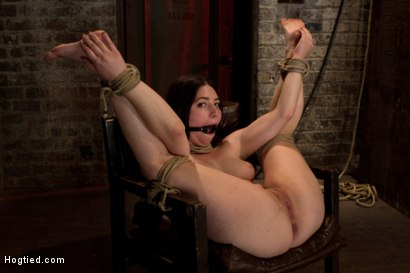 Photo number 1 from Tiny 5'0 100lb girl in the ultimate fuck me position. Orgasm overload to the max! Massive squirting. shot for Hogtied on Kink.com. Featuring Serena Blair in hardcore BDSM & Fetish porn.