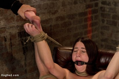 Photo number 12 from Tiny 5'0 100lb girl in the ultimate fuck me position. Orgasm overload to the max! Massive squirting. shot for Hogtied on Kink.com. Featuring Serena Blair in hardcore BDSM & Fetish porn.