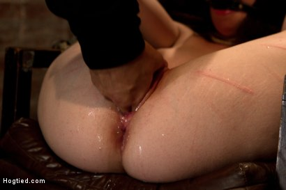 Photo number 9 from Tiny 5'0 100lb girl in the ultimate fuck me position. Orgasm overload to the max! Massive squirting. shot for Hogtied on Kink.com. Featuring Serena Blair in hardcore BDSM & Fetish porn.