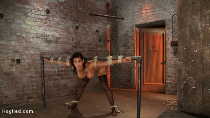 Photo number 3 from Isis Love, bound, gagged, flogged, fucked to multiple orgasms. Her first submissive role in years! shot for Hogtied on Kink.com. Featuring Isis Love in hardcore BDSM & Fetish porn.