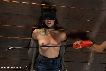 Photo number 2 from Total Amateur Gets Tied up and Dominated for the First time Ever shot for Wired Pussy on Kink.com. Featuring Natalie and Princess Donna Dolore in hardcore BDSM & Fetish porn.