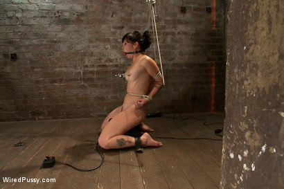 Photo number 5 from Total Amateur Gets Tied up and Dominated for the First time Ever shot for Wired Pussy on Kink.com. Featuring Natalie and Princess Donna Dolore in hardcore BDSM & Fetish porn.