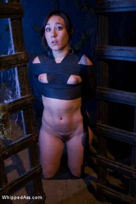 """Photo number 4 from Sinn Sage gets SPANKED in """"Hooker's Curse""""!!!!! shot for Whipped Ass on Kink.com. Featuring Bobbi Starr, Felony, Sinn Sage and DragonLily in hardcore BDSM & Fetish porn."""