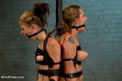 Photo number 11 from Kissing Co-Eds shot for Wired Pussy on Kink.com. Featuring Bobbi Starr, Sensi Pearl and Lizzy London in hardcore BDSM & Fetish porn.