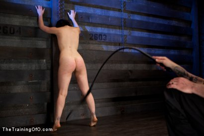Photo number 10 from Juliette Day 2  Heavy Labor, Intense Bondage, and Brutal Torment shot for The Training Of O on Kink.com. Featuring Juliette March and Alexxa Bound in hardcore BDSM & Fetish porn.
