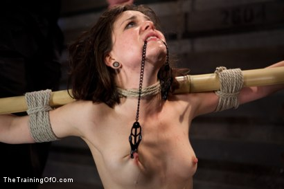 """Photo number 11 from Juliette March """"pixie"""" Day 3<br>Sexual Slave Training, Humiliation, & Endurance Testing shot for The Training Of O on Kink.com. Featuring Juliette March and Derrick Pierce in hardcore BDSM & Fetish porn."""