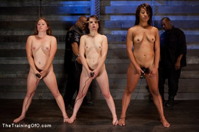 Photo number 6 from Five Girl Intake<br>The Elimination Begins shot for The Training Of O on Kink.com. Featuring Juliette March, Eden Coxxx, Alexxa Bound, Maxine Holloway and Dana Vixen in hardcore BDSM & Fetish porn.