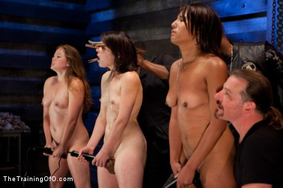 Photo number 11 from Five Girl Intake<br>The Elimination Begins shot for The Training Of O on Kink.com. Featuring Juliette March, Eden Coxxx, Alexxa Bound, Maxine Holloway and Dana Vixen in hardcore BDSM & Fetish porn.