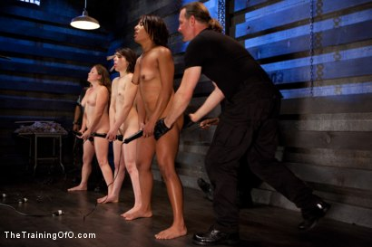 Photo number 13 from Five Girl Intake<br>The Elimination Begins shot for The Training Of O on Kink.com. Featuring Juliette March, Eden Coxxx, Alexxa Bound, Maxine Holloway and Dana Vixen in hardcore BDSM & Fetish porn.