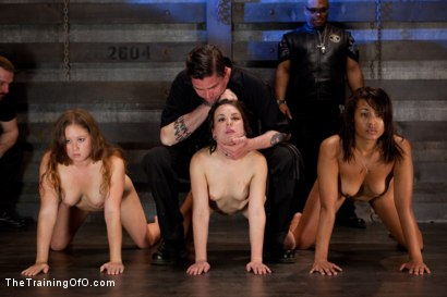 Photo number 5 from Five Girl Intake<br>The Elimination Begins shot for The Training Of O on Kink.com. Featuring Juliette March, Eden Coxxx, Alexxa Bound, Maxine Holloway and Dana Vixen in hardcore BDSM & Fetish porn.