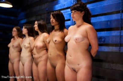 Five Girl IntakeThe Elimination Begins