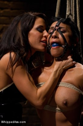 Photo number 8 from Beretta James shot for Whipped Ass on Kink.com. Featuring Gia DiMarco and Beretta James in hardcore BDSM & Fetish porn.
