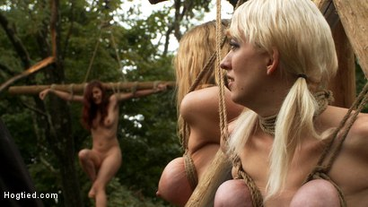 """Photo number 15 from """"The Dig"""": The conclusion. A BDSM Abduction Horror Feature film<br>Out door bondage at its best! shot for Hogtied on Kink.com. Featuring Rain DeGrey, Cherry Torn and Iona Grace in hardcore BDSM & Fetish porn."""