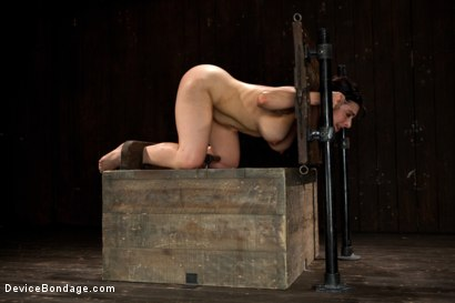 Photo number 2 from Big Breasts, Big Mouth, Big Orgasms shot for Device Bondage on Kink.com. Featuring Annika in hardcore BDSM & Fetish porn.