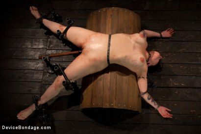 Photo number 5 from Big Breasts, Big Mouth, Big Orgasms shot for Device Bondage on Kink.com. Featuring Annika in hardcore BDSM & Fetish porn.