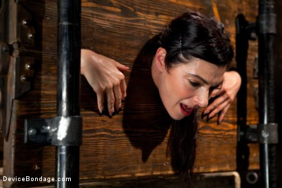 Photo number 6 from Big Breasts, Big Mouth, Big Orgasms shot for Device Bondage on Kink.com. Featuring Annika in hardcore BDSM & Fetish porn.