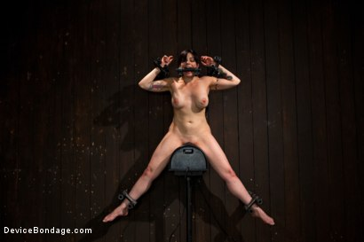 Photo number 11 from Big Breasts, Big Mouth, Big Orgasms shot for Device Bondage on Kink.com. Featuring Annika in hardcore BDSM & Fetish porn.