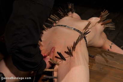 Photo number 8 from Big Breasts, Big Mouth, Big Orgasms shot for Device Bondage on Kink.com. Featuring Annika in hardcore BDSM & Fetish porn.