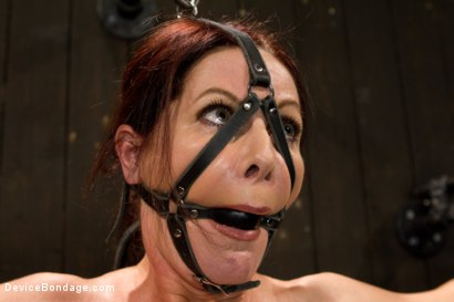 Photo number 8 from Mature Alert: Curvaceous first timer  shot for Device Bondage on Kink.com. Featuring Magdalene St. Michaels in hardcore BDSM & Fetish porn.