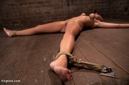 Photo number 4 from 19yr old blond has breasts bound, is oiled, has massive orgasms ripped from her helpless body.  shot for Hogtied on Kink.com. Featuring Lizzy London in hardcore BDSM & Fetish porn.