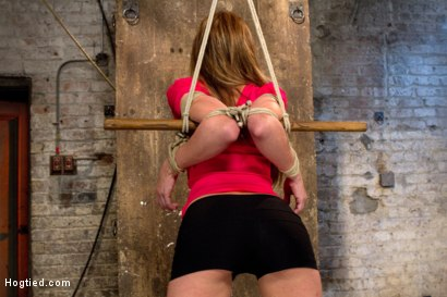 Photo number 14 from Amy Brooke is stripped, gagged, abused<br />Nipple clamped, flogged, made to cum until she squirts shot for Hogtied on Kink.com. Featuring Amy Brooke in hardcore BDSM & Fetish porn.