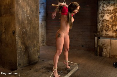 Photo number 8 from Amy Brooke is stripped, gagged, abused<br />Nipple clamped, flogged, made to cum until she squirts shot for Hogtied on Kink.com. Featuring Amy Brooke in hardcore BDSM & Fetish porn.