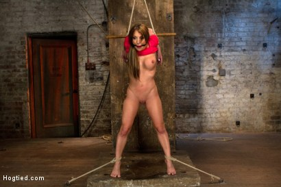 Photo number 10 from Amy Brooke is stripped, gagged, abused<br />Nipple clamped, flogged, made to cum until she squirts shot for Hogtied on Kink.com. Featuring Amy Brooke in hardcore BDSM & Fetish porn.