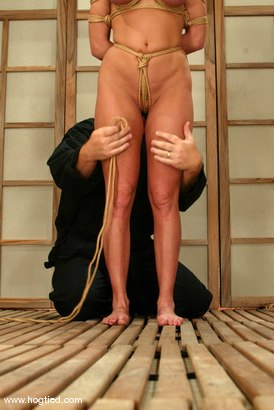 Photo number 9 from Venus shot for Hogtied on Kink.com. Featuring Venus in hardcore BDSM & Fetish porn.