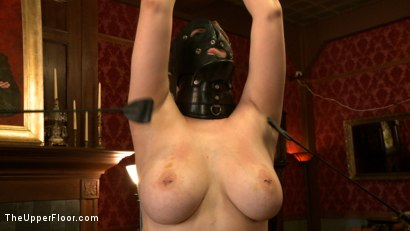 Photo number 14 from Service Day: Smothered shot for The Upper Floor on Kink.com. Featuring Nerine Mechanique in hardcore BDSM & Fetish porn.