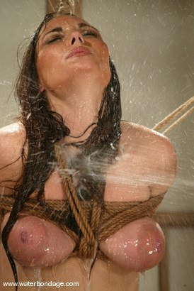 Photo number 3 from Venus shot for Water Bondage on Kink.com. Featuring Venus in hardcore BDSM & Fetish porn.