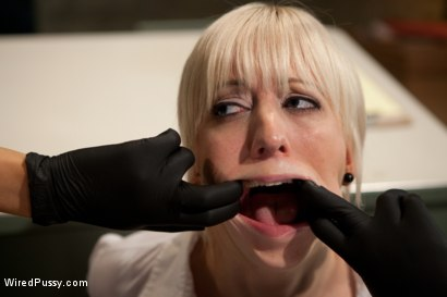 Photo number 2 from Sexy TSA Agent has the Tables Turned and Finds Herself the One Getting Inspected shot for Wired Pussy on Kink.com. Featuring Cherry Torn and Rain DeGrey in hardcore BDSM & Fetish porn.