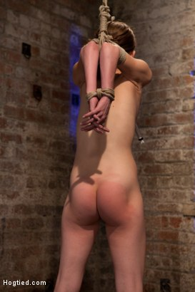 Photo number 4 from Tiny shaved cutie bound tightly, and made to cum while in tip-toe suspension shot for Hogtied on Kink.com. Featuring Isis Love and Sensi Pearl in hardcore BDSM & Fetish porn.