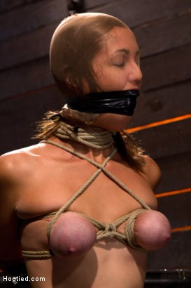 Photo number 8 from Audrey had her breast bound & huge mouth properly gagged.<br>Nipples clamped and made to cum, & cum! shot for Hogtied on Kink.com. Featuring Isis Love and Audrey Rose in hardcore BDSM & Fetish porn.