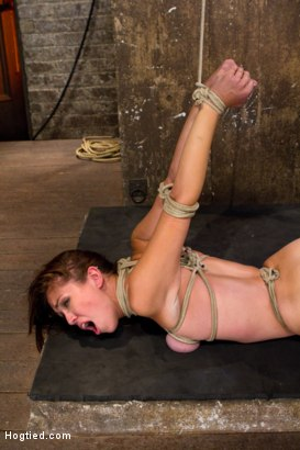 Photo number 14 from Isis Love, Rain DeGrey and Audrey Rose shot for Hogtied on Kink.com. Featuring Isis Love and Audrey Rose in hardcore BDSM & Fetish porn.