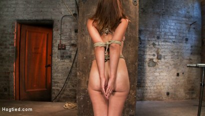 Photo number 3 from Isis Love, Rain DeGrey and Audrey Rose shot for Hogtied on Kink.com. Featuring Isis Love and Audrey Rose in hardcore BDSM & Fetish porn.