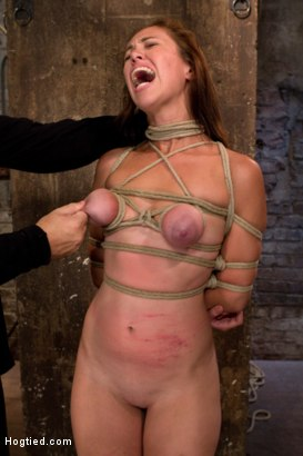 Photo number 11 from Part 3/4 of Augusts Live Show: Tutorial on how to tie a Japanese box tie w/Long brutal face fucking. shot for Hogtied on Kink.com. Featuring Isis Love and Audrey Rose in hardcore BDSM & Fetish porn.