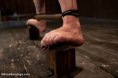 Photo number 8 from Intense Bondage Induces Severe and Electric Orgasms shot for Device Bondage on Kink.com. Featuring Krysta Kaos in hardcore BDSM & Fetish porn.