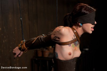 Photo number 6 from Intense Bondage Induces Severe and Electric Orgasms shot for Device Bondage on Kink.com. Featuring Krysta Kaos in hardcore BDSM & Fetish porn.