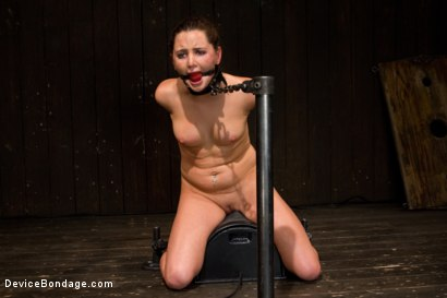 Photo number 11 from Skydiver lands herself in a dungeon shot for Device Bondage on Kink.com. Featuring Hope Howell in hardcore BDSM & Fetish porn.