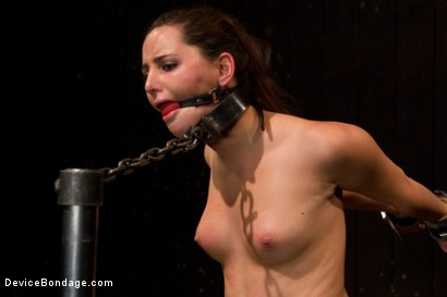 Photo number 12 from Skydiver lands herself in a dungeon shot for Device Bondage on Kink.com. Featuring Hope Howell in hardcore BDSM & Fetish porn.