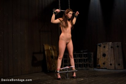 Photo number 4 from Skydiver lands herself in a dungeon shot for Device Bondage on Kink.com. Featuring Hope Howell in hardcore BDSM & Fetish porn.