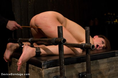 Photo number 7 from Skydiver lands herself in a dungeon shot for Device Bondage on Kink.com. Featuring Hope Howell in hardcore BDSM & Fetish porn.