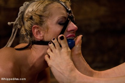 Photo number 6 from Asking For Trouble shot for Whipped Ass on Kink.com. Featuring Lorelei Lee, Kaylee Hilton and Kara Price in hardcore BDSM & Fetish porn.