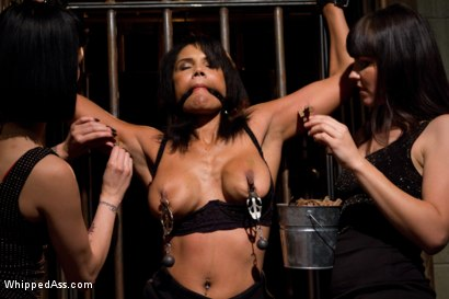 Photo number 10 from Fist Fucking The Warden shot for Whipped Ass on Kink.com. Featuring Bobbi Starr, Asphyxia Noir and Anjanette Astoria in hardcore BDSM & Fetish porn.