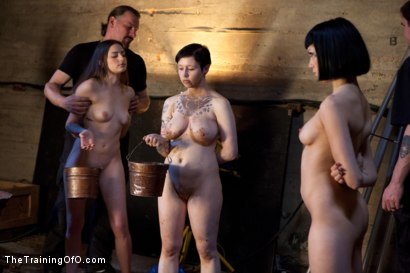 Photo number 4 from October Intake<br>Three Doms Test Three Trainees  shot for The Training Of O on Kink.com. Featuring Asphyxia Noir, Missy Minks, Ruby Reaper, Tripod Man and Maestro Stefanos in hardcore BDSM & Fetish porn.