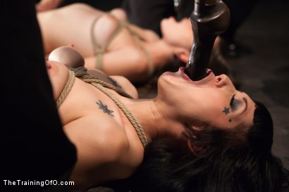 Photo number 6 from October Intake<br>Three Doms Test Three Trainees  shot for The Training Of O on Kink.com. Featuring Asphyxia Noir, Missy Minks, Ruby Reaper, Tripod Man and Maestro Stefanos in hardcore BDSM & Fetish porn.