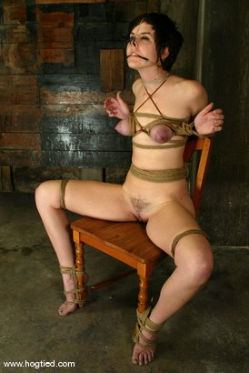 Photo number 7 from trixie kitten shot for Hogtied on Kink.com. Featuring trixie kitten in hardcore BDSM & Fetish porn.