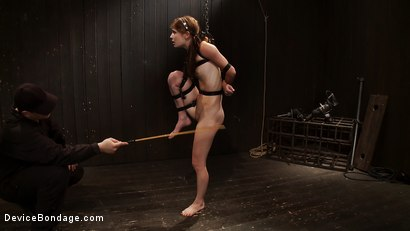 Photo number 12 from The Dancer - distraught and teased shot for Device Bondage on Kink.com. Featuring Isis Love and Sensi Pearl in hardcore BDSM & Fetish porn.