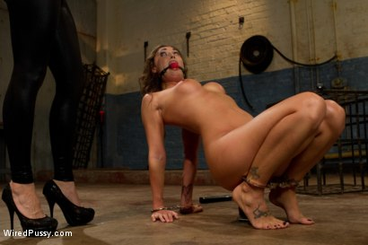 Photo number 13 from Suffer for Me! shot for Wired Pussy on Kink.com. Featuring Lorelei Lee and Melissa Jacobs in hardcore BDSM & Fetish porn.