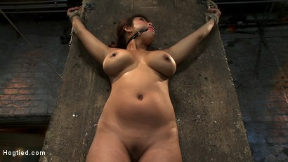Photo number 5 from Hot Flexible Asian with big tits & nipples   Has her leg pulled up & suspended! Cums over & over. shot for Hogtied on Kink.com. Featuring Baylee Lee in hardcore BDSM & Fetish porn.